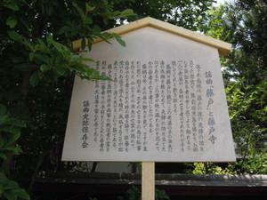 Fujito12
